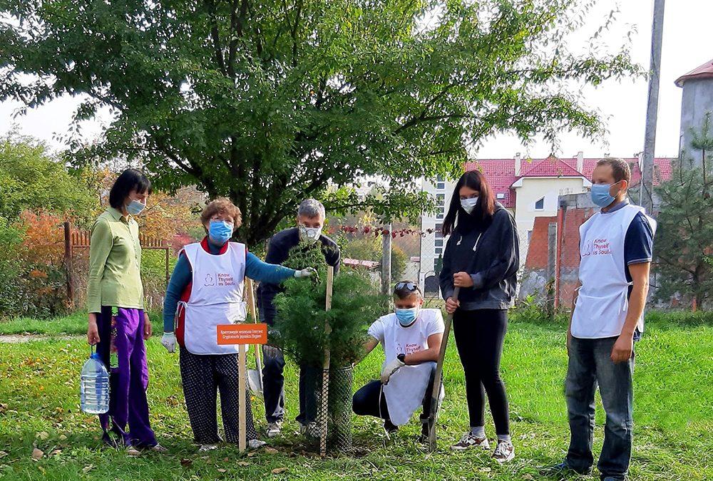 Plant Your Tree