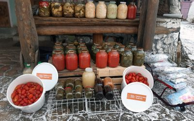 Pickled Food Delivery to School and Kindergarten